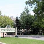 Forest Creek Condo