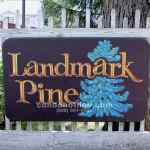 Landmark Pine Condo