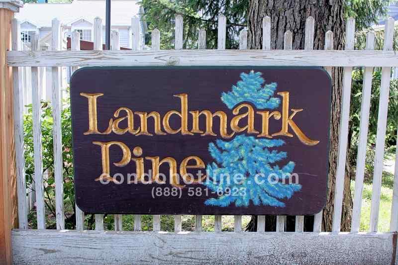 Landmark Pine Condo - Ann Arbor